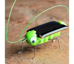 Solar Grasshopper Educational Solar Powered Grasshopper Robot Spielzeug erforderlich Gadget Geschenk Solar Spielzeug Keine Batterien für Kinder